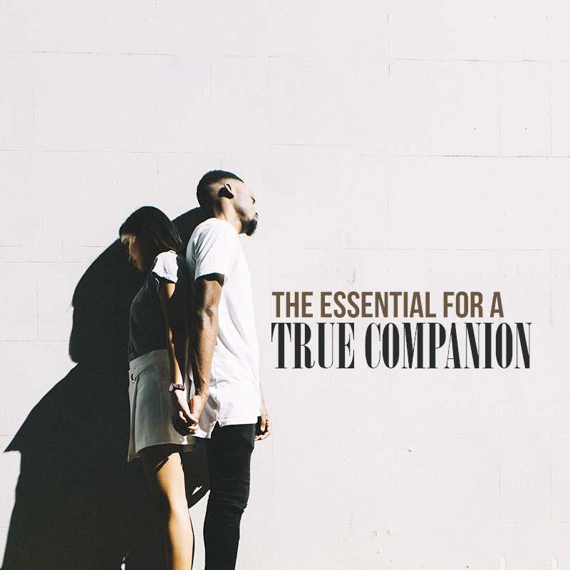 The Essential For a True Companion