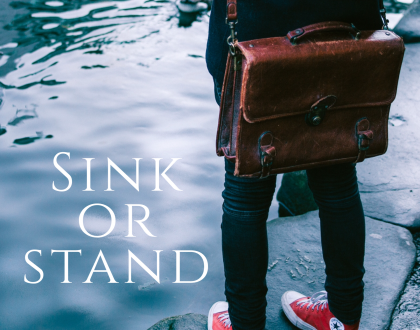 Sink or Stand