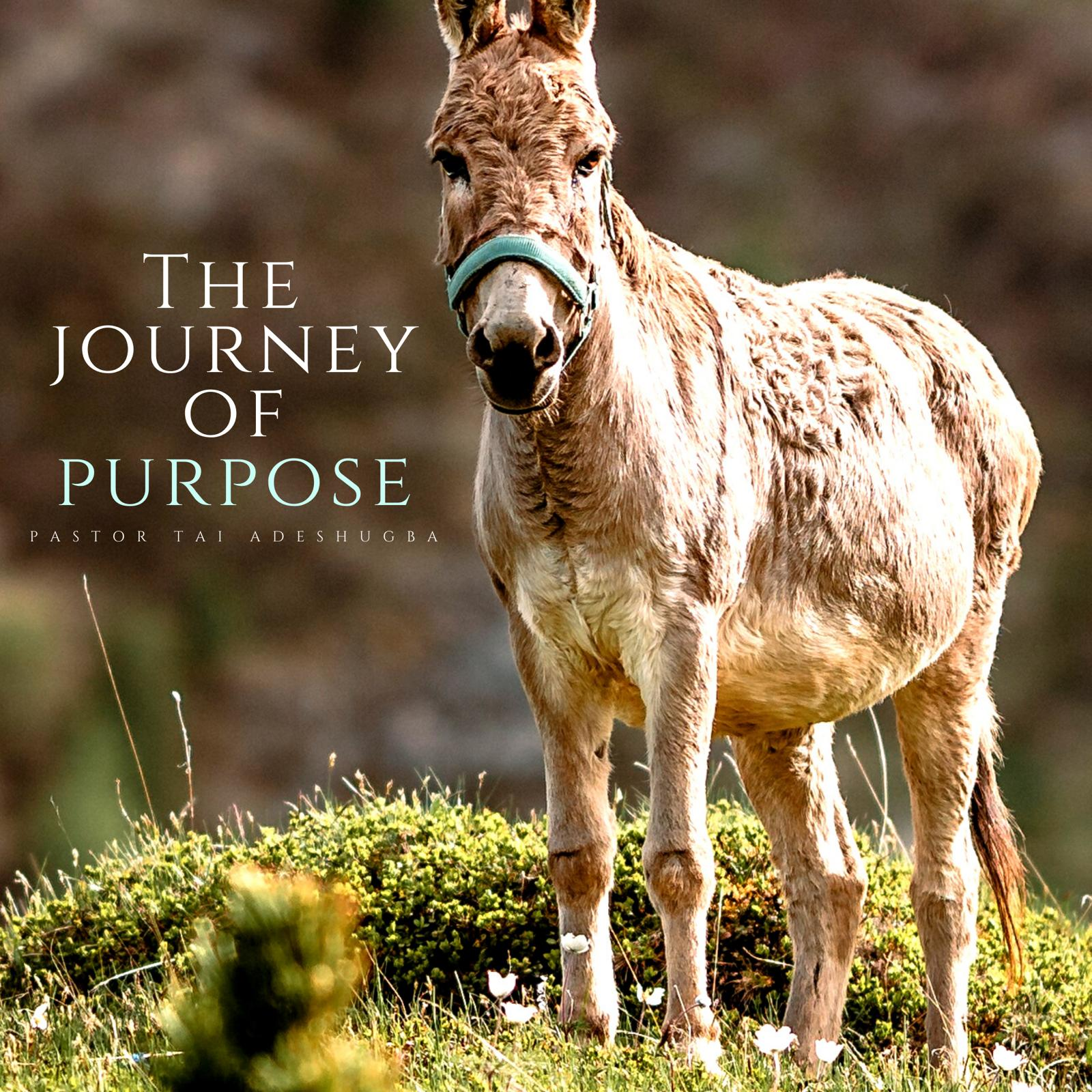 The Journey to Purpose
