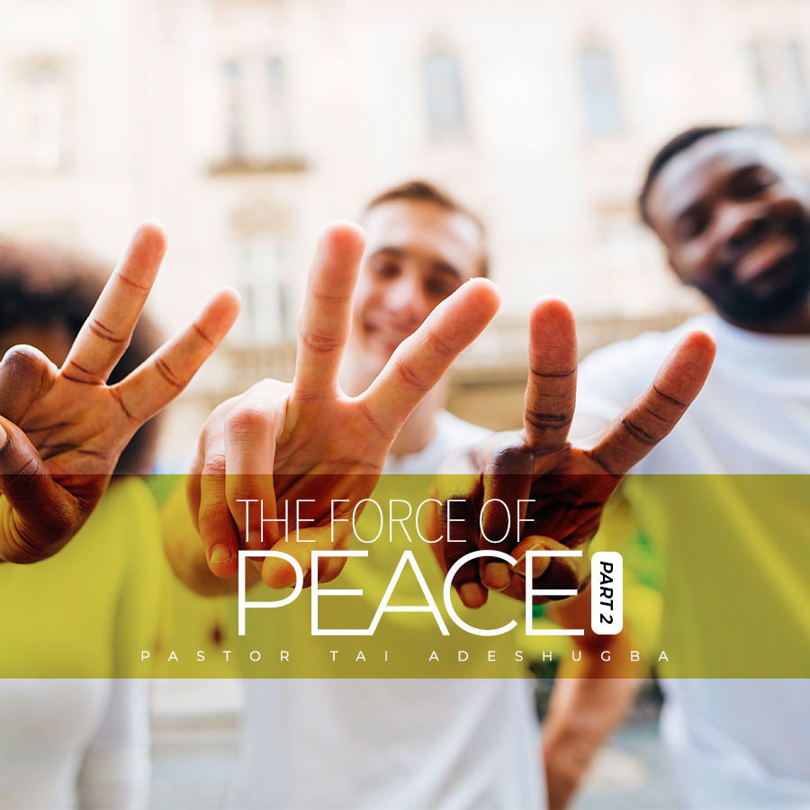 The Force of Peace (Part 2)