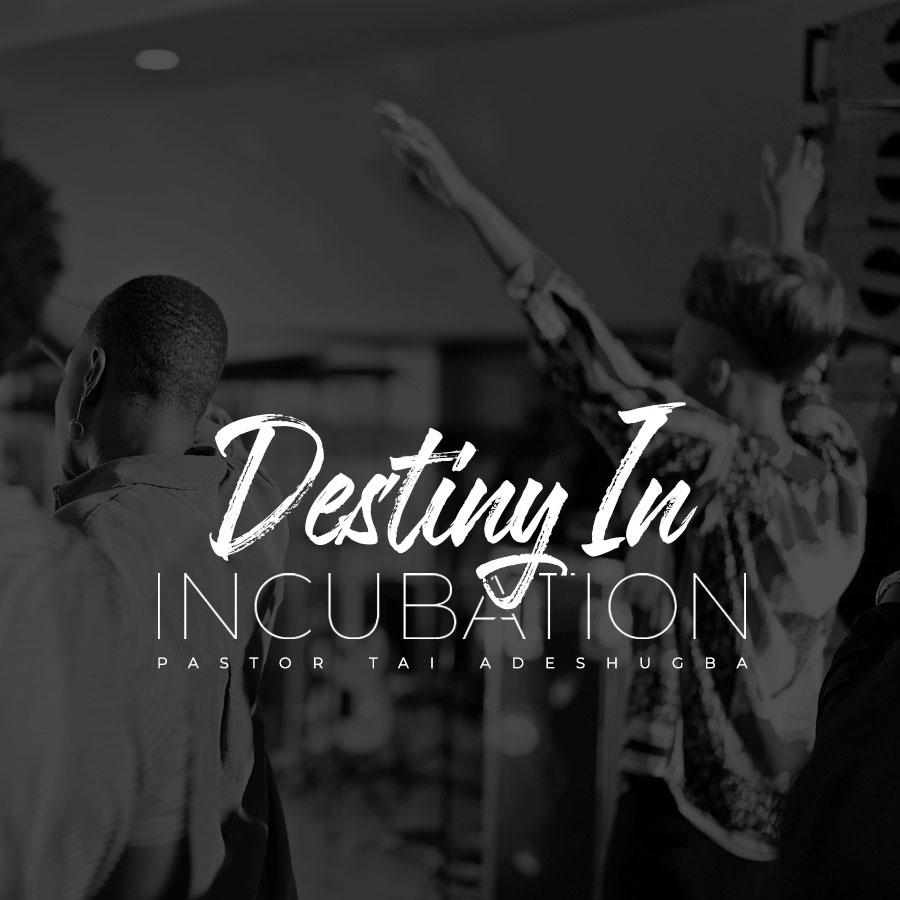 Destiny In Incubation